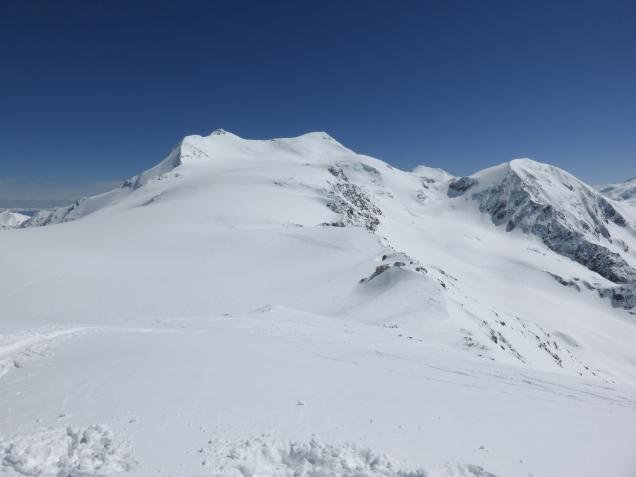 Foto: Manfred Karl / Skitour / Monte Cevedale von Sulden / 11.06.2014 19:50:07
