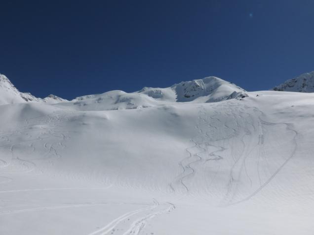 Foto: Manfred Karl / Skitour / Monte Cevedale von Sulden / 11.06.2014 19:49:43