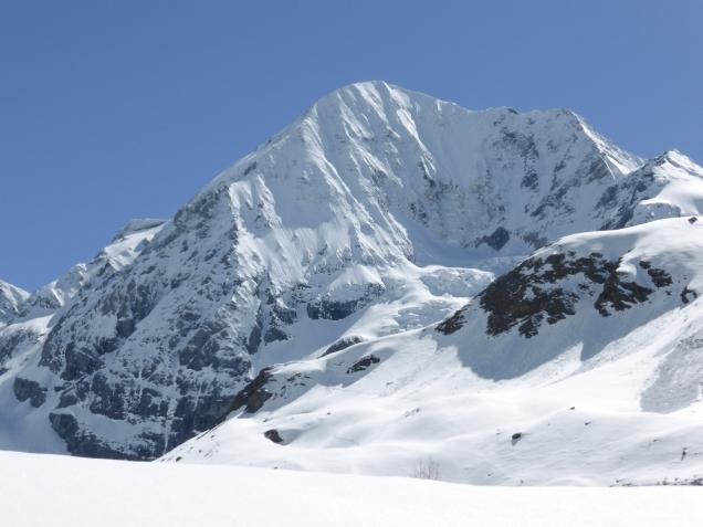 Foto: Manfred Karl / Skitour / Monte Cevedale von Sulden / Traumberg Königspitze / 11.06.2014 19:49:26