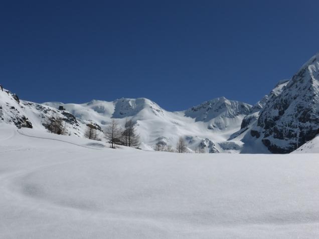 Foto: Manfred Karl / Skitour / Monte Cevedale von Sulden / 11.06.2014 19:49:00