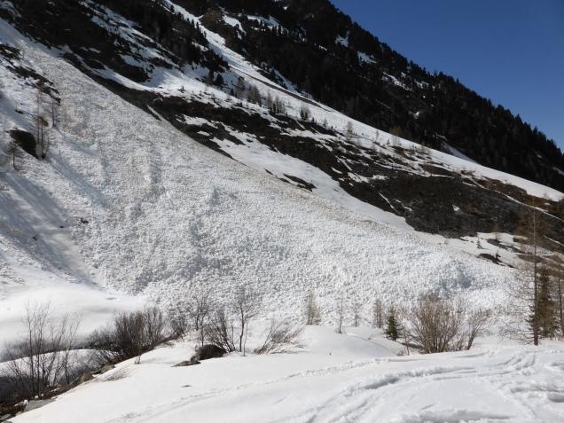 Foto: Manfred Karl / Skitour / Monte Cevedale von Sulden / 11.06.2014 19:48:47