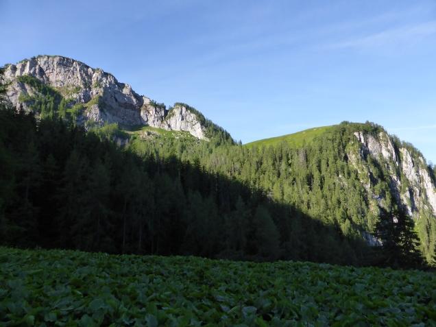 Foto: Manfred Karl / Wandertour / Über die Rotspielscheibe auf den Fagstein / Rotspielscheibe und Farnleiten / 27.07.2014 21:18:15