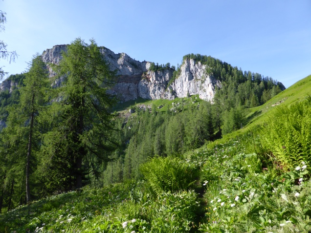 Foto: Manfred Karl / Wandertour / Über die Rotspielscheibe auf den Fagstein / Bequemer Weg zur Rotspielscheibe / 27.07.2014 21:17:50
