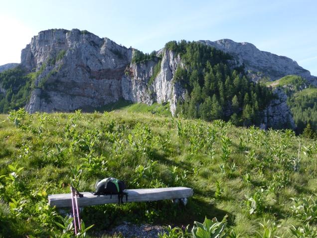 Foto: Manfred Karl / Wandertour / Über die Rotspielscheibe auf den Fagstein / Farnleiten gegen Rotspielscheibe / 27.07.2014 21:17:34