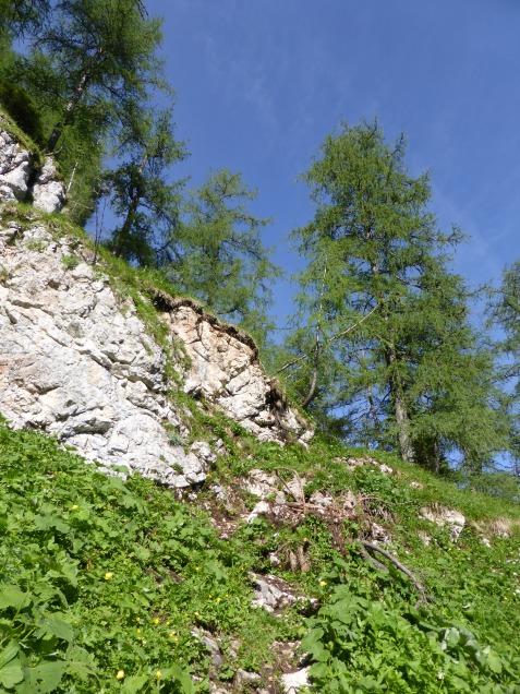 Foto: Manfred Karl / Wandertour / Über die Rotspielscheibe auf den Fagstein / Rechts unterhalb der Felsen geht es raus in die NW-Flanke / 27.07.2014 21:16:57