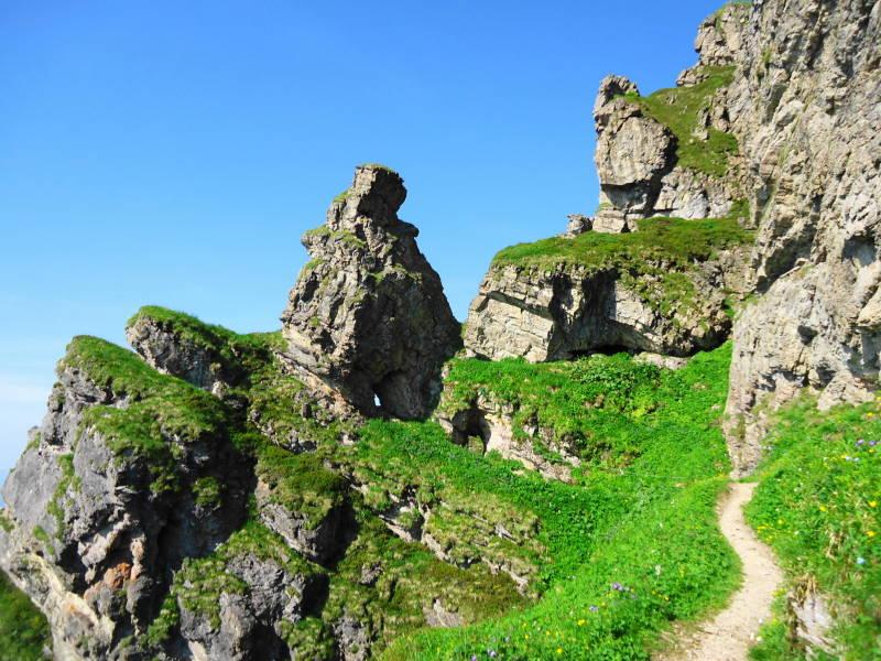 Klettersteig Kitzbüheler Horn : Im sommer gibt es am kitzbüheler horn einen kids kletterpfad