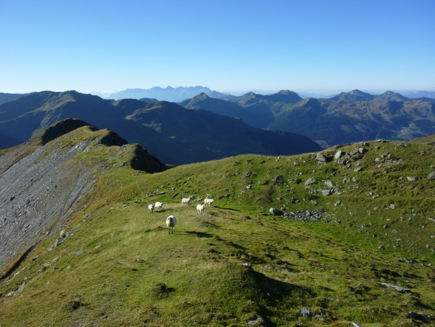Foto: Manfred Karl / Wandertour / Manlitzkogel von der Bürglhütte / 13.11.2014 20:54:41