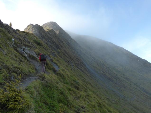 Foto: Manfred Karl / Wandertour / Gipfelreigen rund um die Karteisalm / Anstieg zum Karteiskopf über den Nordostgrat / 08.12.2014 19:46:53