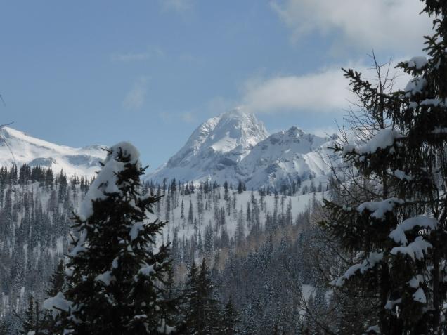 Foto: Manfred Karl / Skitour / Mooskopf von Flachauwinkl / Faulkogel / 02.04.2015 19:23:37
