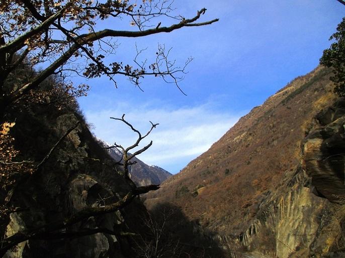 Foto: Andreas Koller / Klettersteigtour / Klettersteig Hoachwool Naturnser Sonnenberg (1200m) / 12.04.2015 18:05:17