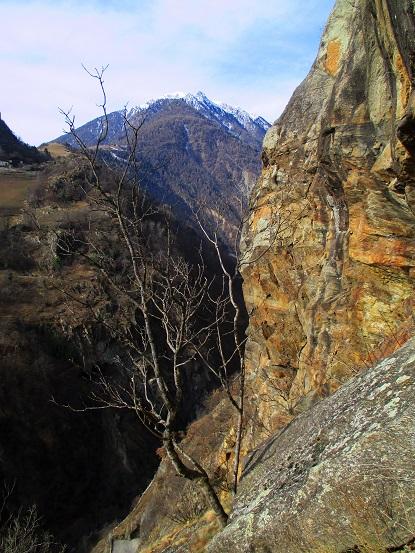 Foto: Andreas Koller / Klettersteigtour / Klettersteig Hoachwool Naturnser Sonnenberg (1200m) / 12.04.2015 18:04:08