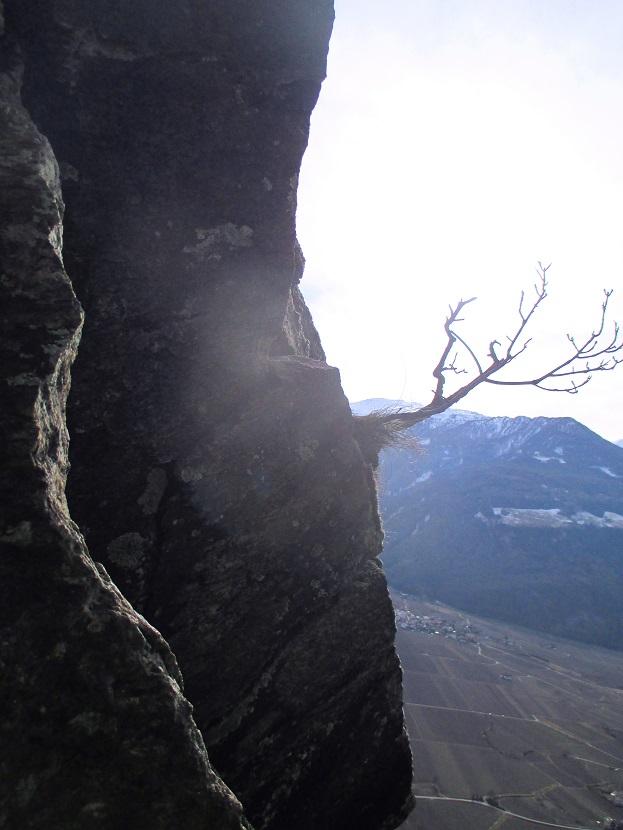 Foto: Andreas Koller / Klettersteigtour / Klettersteig Hoachwool Naturnser Sonnenberg (1200m) / 12.04.2015 18:01:52