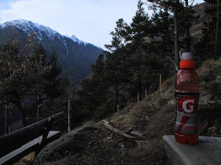 Foto: Andreas Koller / Klettersteigtour / Klettersteig Hoachwool Naturnser Sonnenberg (1200m) / 12.04.2015 17:50:33