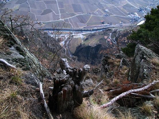 Foto: Andreas Koller / Klettersteigtour / Klettersteig Hoachwool Naturnser Sonnenberg (1200m) / 12.04.2015 17:50:23