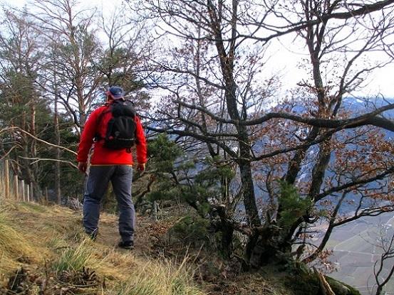 Foto: Andreas Koller / Klettersteigtour / Klettersteig Hoachwool Naturnser Sonnenberg (1200m) / 12.04.2015 17:49:02