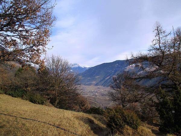 Foto: Andreas Koller / Klettersteigtour / Klettersteig Hoachwool Naturnser Sonnenberg (1200m) / 12.04.2015 17:47:31