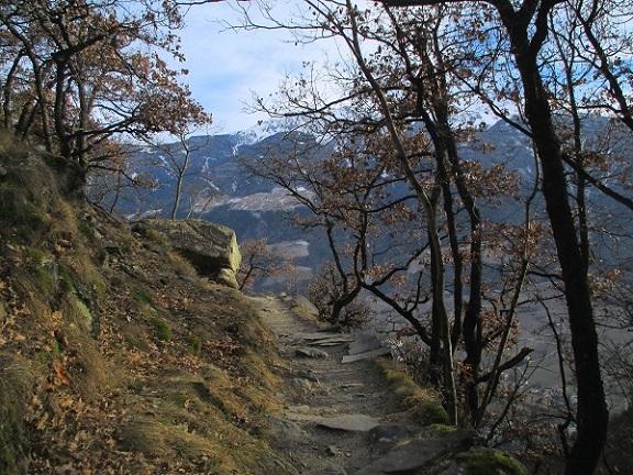 Foto: Andreas Koller / Klettersteigtour / Klettersteig Hoachwool Naturnser Sonnenberg (1200m) / 12.04.2015 16:10:41