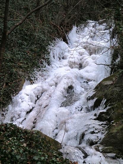 Foto: Andreas Koller / Klettersteigtour / Klettersteig Hoachwool Naturnser Sonnenberg (1200m) / 12.04.2015 16:09:31