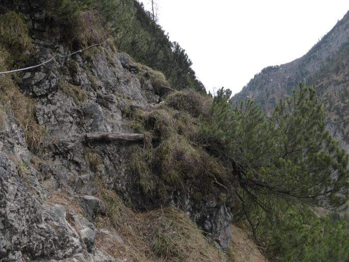 Klettersteig Chiemgau : Chiemgau archive mupinet outdoor