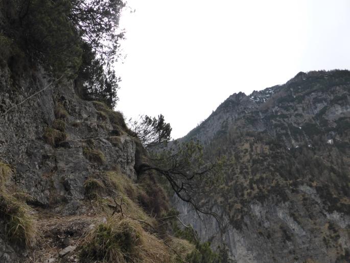 Klettersteig Chiemgau : Fotogalerie tourfotos fotos zur klettersteig tour reibwand