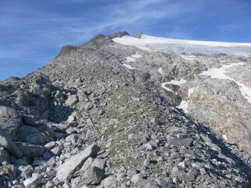 Foto: Wolfgang Lauschensky / Wander Tour / Magerstein 3273m aus dem Bachertal / am Moränenrücken / 25.07.2015 23:06:34