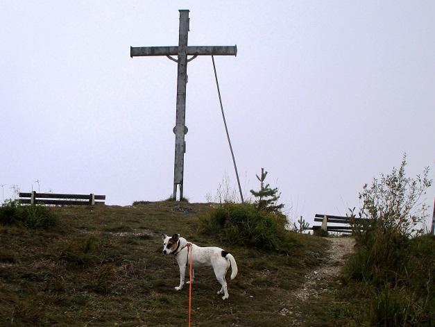 Foto: Andreas Koller / Wandertour / Runde über den Dötzenkopf (1001m) / Am Gipfel des Dötzenkopfs / 28.09.2015 18:38:27