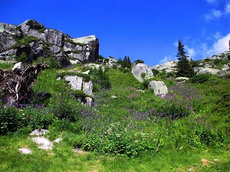 Klettersteig Uri : Fotogalerie tourfotos fotos zur klettersteig tour bergsee