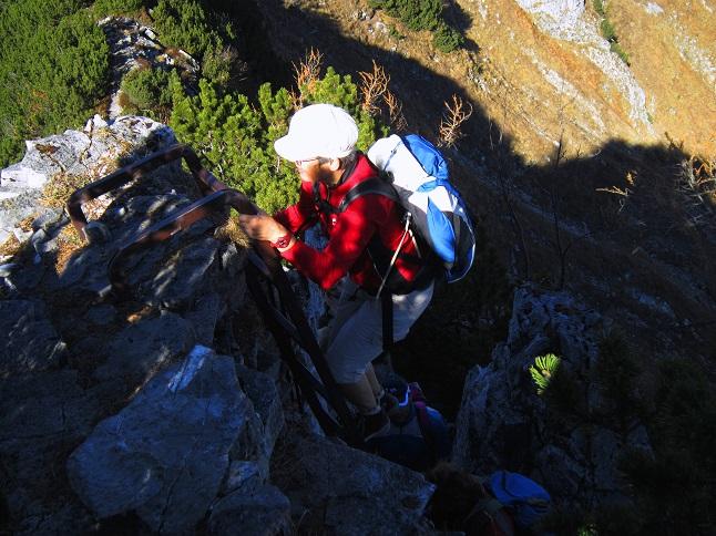 Foto: Andreas Koller / Wandertour / Kammwanderung aufs Gruberhorn (1732m) / Übergang zum Gruberhorn über die Leiter / 08.01.2016 01:29:36