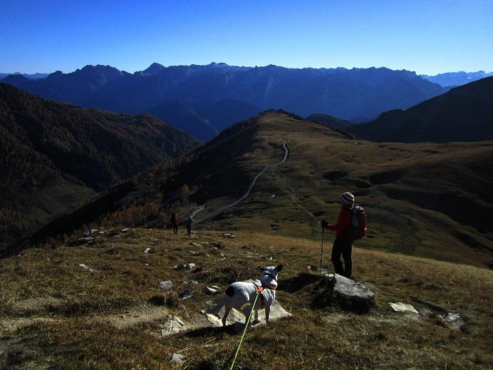 Foto: Andreas Koller / Wandertour / Kammwanderung aufs Gruberhorn (1732m) / Abstieg vom Hohen First / 08.01.2016 01:22:50