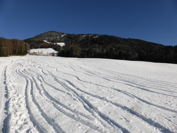 Foto: Manfred Karl / Skitour / Wieserhörndl – Ohne Piste? / Die flachen Bauernwiesen im unteren Teil / 25.01.2016 21:21:07