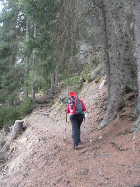 Foto: Wolfgang Lauschensky / Schneeschuhtour / Padauner Kogel 2066m / Wanderweg in der SO-Flanke / 07.04.2016 00:26:49