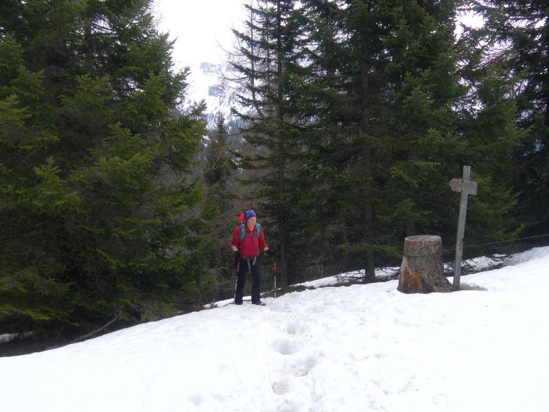 Foto: Wolfgang Lauschensky / Schneeschuhtour / Padauner Kogel 2066m / erste Firnfelder  / 07.04.2016 00:26:22