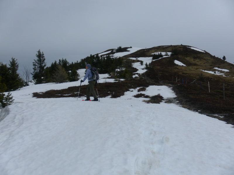 Foto: Wolfgang Lauschensky / Schneeschuhtour / Padauner Kogel 2066m / nordwärts zur Gipfelkuppe / 07.04.2016 00:25:09