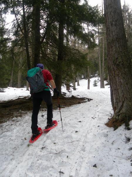 Foto: Wolfgang Lauschensky / Schneeschuhtour / Vennspitze und Padauner Berg / Hochwald / 07.04.2016 14:46:26