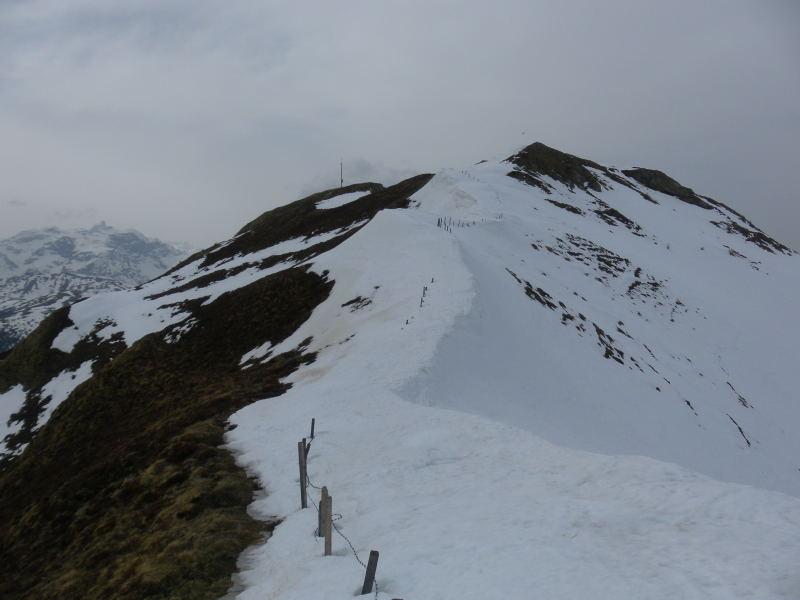 Foto: Wolfgang Lauschensky / Schneeschuhtour / Vennspitze und Padauner Berg / Padauner Berg Ostgratrücken / 07.04.2016 14:44:51