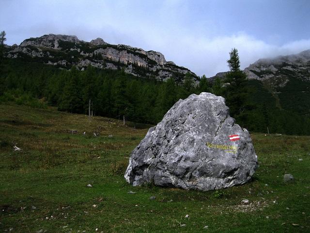 Foto: Andreas Koller / Klettersteig Tour / Bismarcksteig und Predigtstuhl (1902m) / Anstieg am Schlangenweg / 29.04.2016 19:20:22