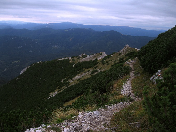 Foto: Andreas Koller / Klettersteig Tour / Bismarcksteig und Predigtstuhl (1902m) / 29.04.2016 19:12:48