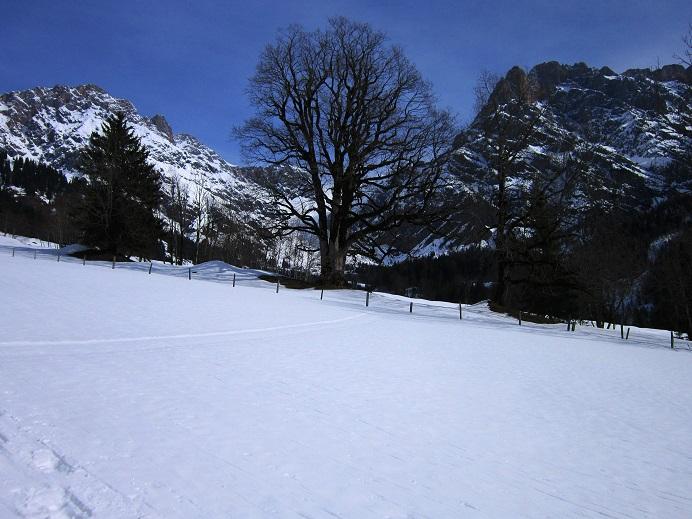 Foto: Andreas Koller / Skitour / Steile Hänge am Marterlkopf (2445m) / 13.05.2016 01:10:40