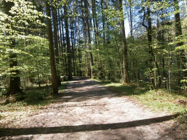 Foto: Manfred Karl / Rad Tour / Am Achenweg zum Königssee / 23.05.2016 21:06:40
