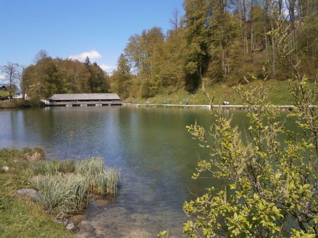 Foto: Manfred Karl / Rad Tour / Am Achenweg zum Königssee / Abfluss vom Königssee / 23.05.2016 21:06:08