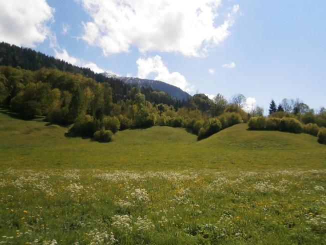Foto: Manfred Karl / Rad Tour / Am Achenweg zum Königssee / Kehlstein / 23.05.2016 21:04:56