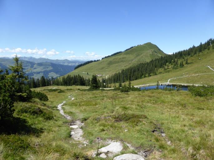 Foto: Manfred Karl / Wandertour / Panoramawanderung Gampenkogel und Fleiding / 07.08.2016 19:18:47