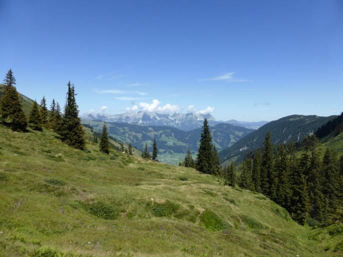 Foto: Manfred Karl / Wandertour / Panoramawanderung Gampenkogel und Fleiding / 07.08.2016 19:17:00