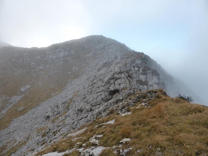 Foto: Manfred Karl / Wandertour / Großer Ötscher mit Gipfelrundweg / Der kurze Felsgrat zum Taubenstein / 13.11.2016 19:05:37