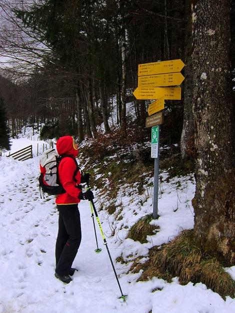 Foto: Andreas Koller / Wander Tour / Im Winter aufs Kienbergl (1071m) / Wegstudium beim Aufstieg zum Kienbergl / 10.01.2017 01:47:32