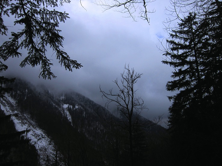 Foto: Andreas Koller / Wander Tour / Im Winter aufs Kienbergl (1071m) / 10.01.2017 01:46:27