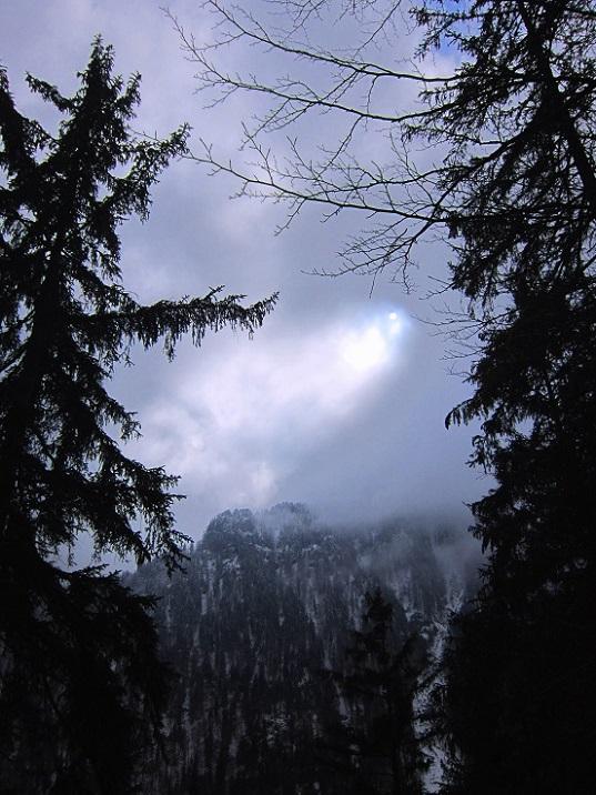Foto: Andreas Koller / Wander Tour / Im Winter aufs Kienbergl (1071m) / 10.01.2017 01:45:48