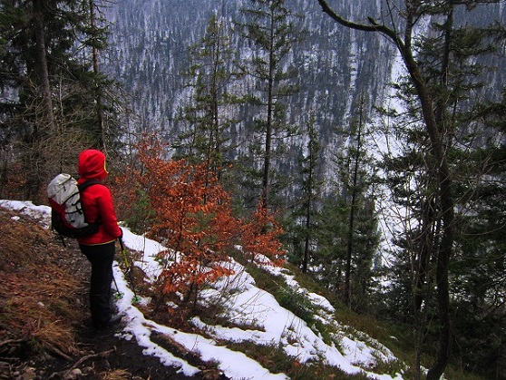 Foto: Andreas Koller / Wander Tour / Im Winter aufs Kienbergl (1071m) / 10.01.2017 01:45:16