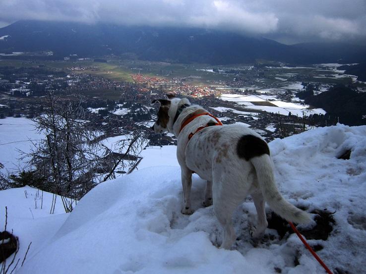 Foto: Andreas Koller / Wander Tour / Im Winter aufs Kienbergl (1071m) / 10.01.2017 01:42:48