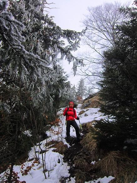 Foto: Andreas Koller / Wander Tour / Im Winter aufs Kienbergl (1071m) / Abstieg vom Kienbergl / 10.01.2017 01:41:12